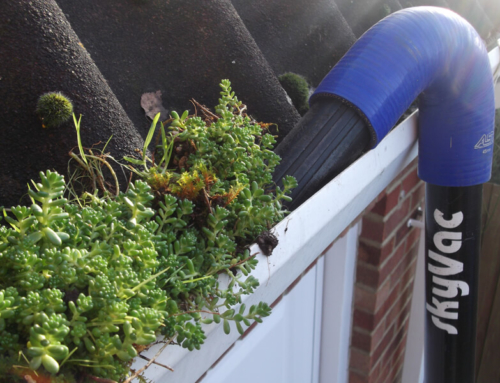 Signs Your Gutters Need Cleaning
